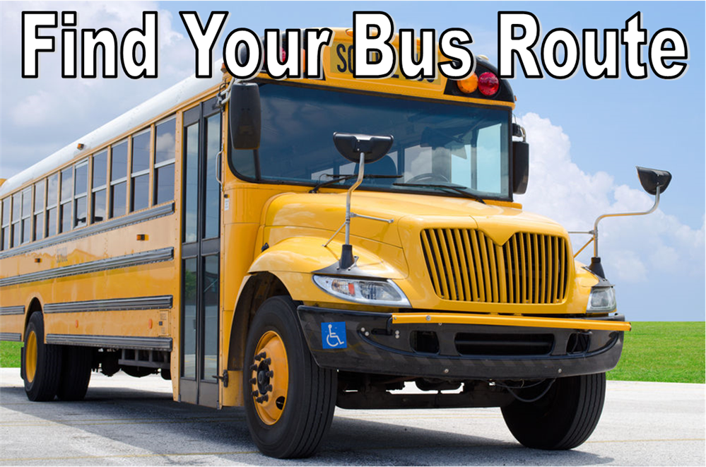 Find School and Bus Route