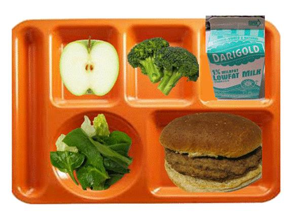 Complete Meal - tray with apple, broccoli, milk, salad and chicken burger.