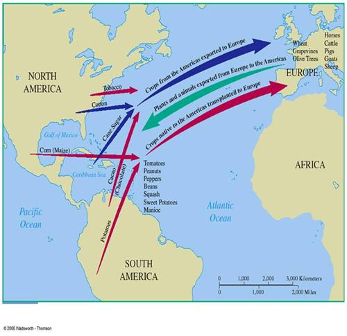 Columbian Exchange Map Related Keywords Amp Suggestions